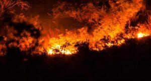 Ночью под Ялтой снова горел лес