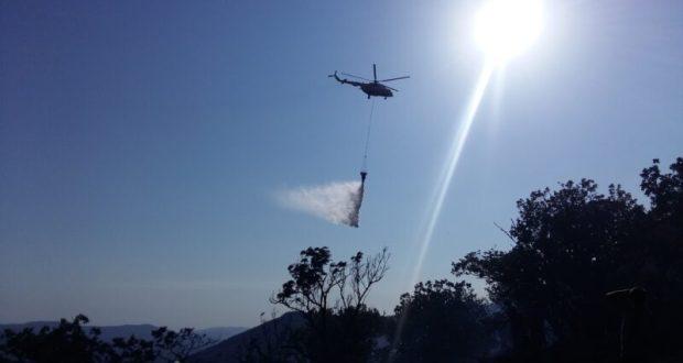 Крупный лесной пожар в районе Старого Крыма потушен