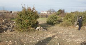 В Севастополе под суд пойдёт мужчина: зверски забил камнями жену и распространял порнографию