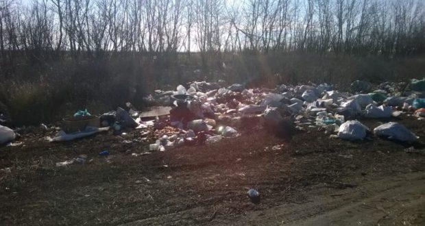 В Крыму убраны 190 стихийных свалок. По сигналам общественности