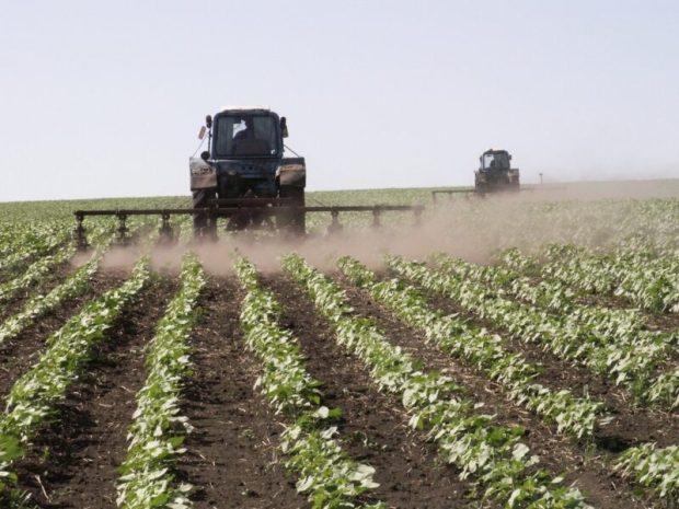 Китайские инвесторы собираются перерабатывать в Крыму сельхозпродукцию