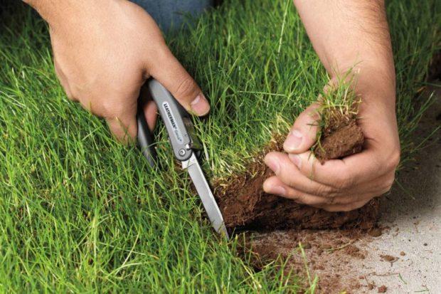 Пять причин, по которым собственник может лишиться земельного участка