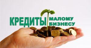 Мнение: малый торговый бизнес Крыма стоит допустить к льготному кредитованию