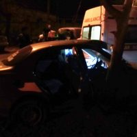 В Феодосии водитель «Ланоса» не заметил дерево