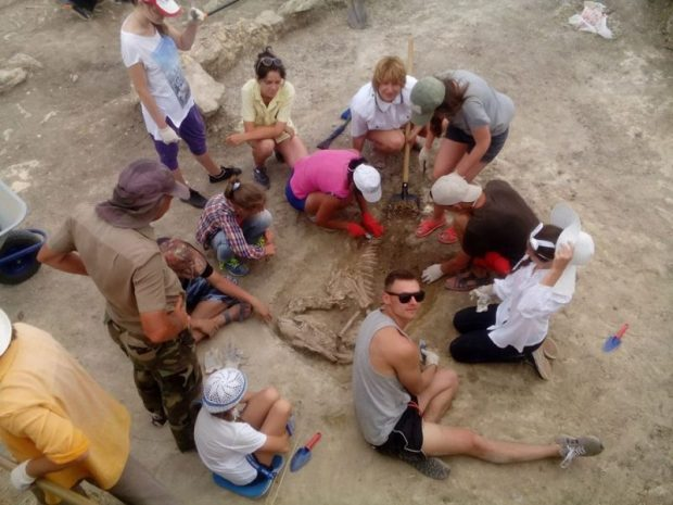 Летом в Крыму - масштабные археологические раскопки. Объявлен набор волонтёров!