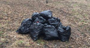 В Евпатории на субботнике обнаружили мешок с останками человека
