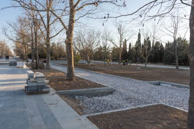 В Парке Победы курсанты высадили аллею тюльпанных деревьев