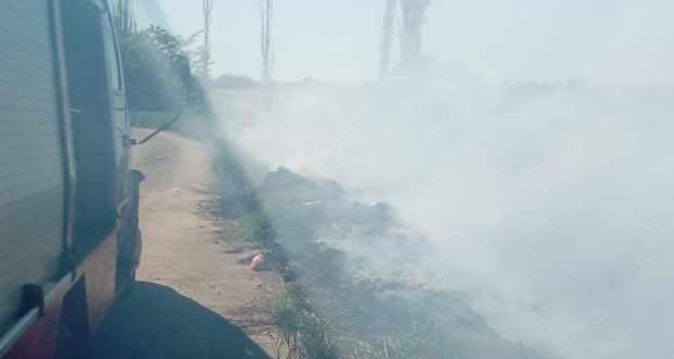 В Крыму ежедневно – от 5 до 10 возгораний сухой растительности