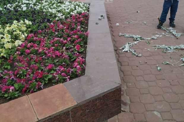 Неизвестные вандалы в Феодосии изувечили городские клумбы