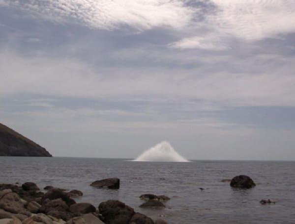 В акватории Черного моря уничтожены авиационные магнитные донные мины АМД-1000