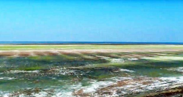 СМИ сообщают о повышении кислотности в озере-накопителе в Армянске, экологи отчитываются о воздухе