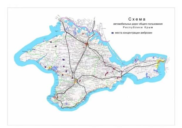 В Крыму – карантин из-за амброзии