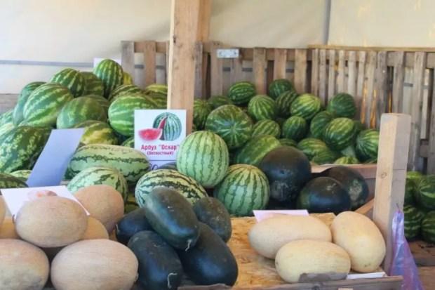 В Севастополе 30 официальных точек продажи бахчевых - арбузов и дынь