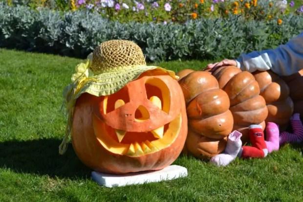 Хеллоуину вопреки: в Крыму пройдет фестиваль тыкв