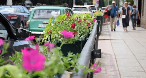 Власти Ялты решили кардинально изменить подход к озеленению города