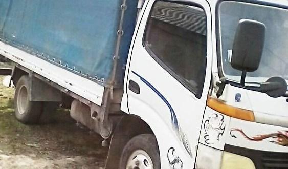 ДТП на трассе «Симферополь – Евпатория»: грузовик врезался в дерево