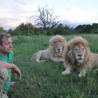 Вендетта хозяина крымского парка львов «Тайган» с официальными структурами близится к развязке