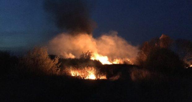 В минувшие сутки сухостой в Крыму горел на 7 гектарах. Человеческий фактор - в основе