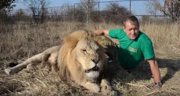 В Крыму могут закрыться зоопарк «Сказка» и парк львов «Тайган»