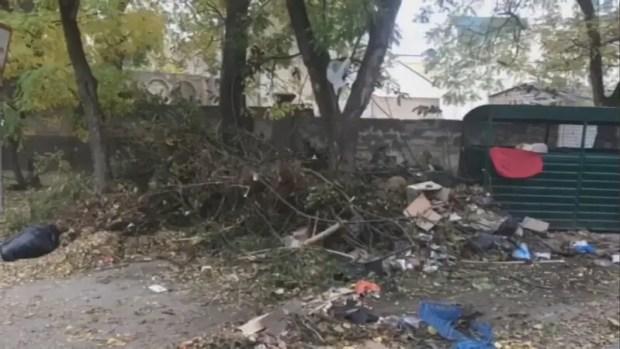 Власти Евпатории просят горожан складировать мусор на определённых площадках