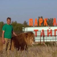"Суд принял решение: сафари-парк ""Тайган"" закрыт"