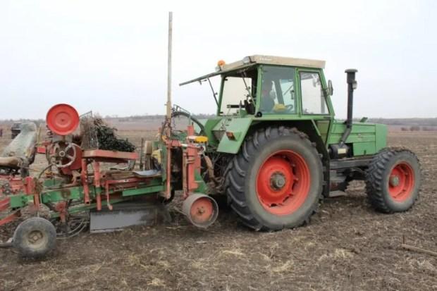 Севастопольские аграрии идут на рекорд - виноградников в регионе станет больше