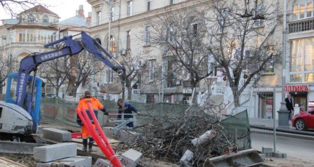 На улице Большая Морская рубят деревья. Наблюдательный совет контролирует