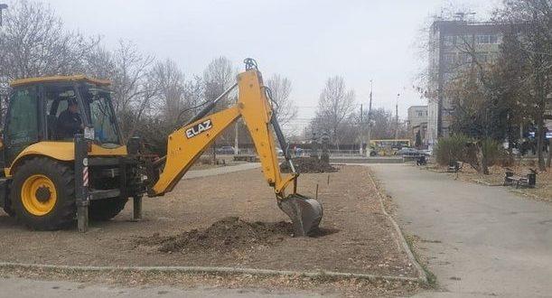В Симферополе идёт компенсационная высадка деревьев