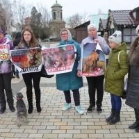 В Керчи полиция задержала защитников парка львов «Тайган»