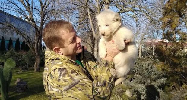 Неожиданно! В Крыму взяли под арест владельца сафари-парка «Тайган» Олега Зубкова