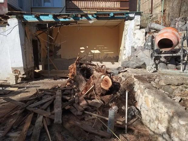 В южнобережном поселке Симеиз неизвестные вырубили можжевельник