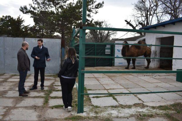 Зооуголок Детского парка Симферополя хотят сделать одним из лучших в стране