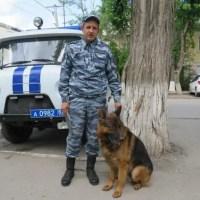 В Армянске полицейский пёс Ильхан помог раскрыть кражу