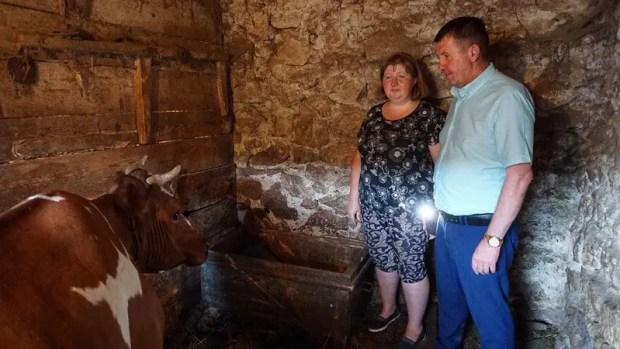 Уроки доброты от севастопольского «Добровольца»: корова – в подарок семье из села Широкое
