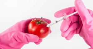 Пестициды в современном агропроме: профессиональный анализ спасет и урожай, и репутацию