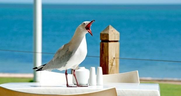 Гидрометцентр назвал российский курорт с самым теплым морем