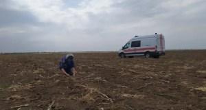 В Ленинском районе Крыма обезвредили очередные боеприпасы времён ВОВ