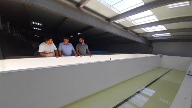 В Крыму запустили первый (и единственный в Европе) инкубатор по производству малька креветки Vannamei