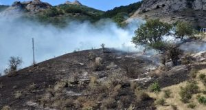 Пожар едва не натворил бед в Карадагском заповеднике