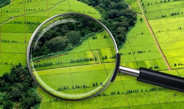 Инспекторы Госкомрегистра РК проверят более 70 земельных участков, где есть признаки их нецелевого использования
