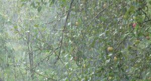 В Симферополе выпала половина месячной нормы осадков за один день