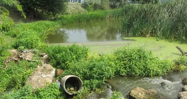В Красногвардейском районе Крыма сельчане перегородили русло реки Салгир