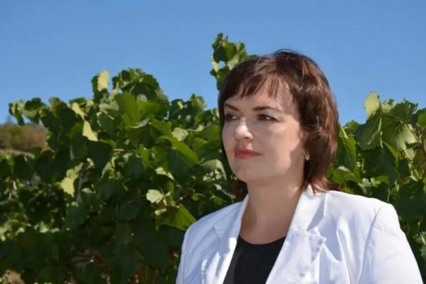 Севастопольские аграрии планируют собрать за сезон порядка 20 тысяч тонн винограда