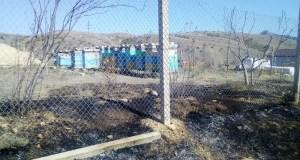 Как отстояли пасеку от огня – пожар под Феодосией
