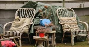 Две трети россиян отдыхали дома и на даче, две трети остались довольны летним отдыхом