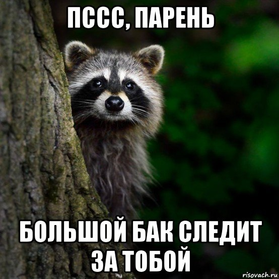 http://simadm.ru