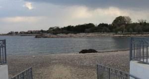 Курортный сезон завершен. Власти Севастополя разбираются с недобросовестными операторами пляжей
