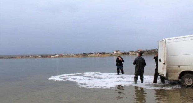До конца года в крымские водохранилища выпустят миллион мальков рыб