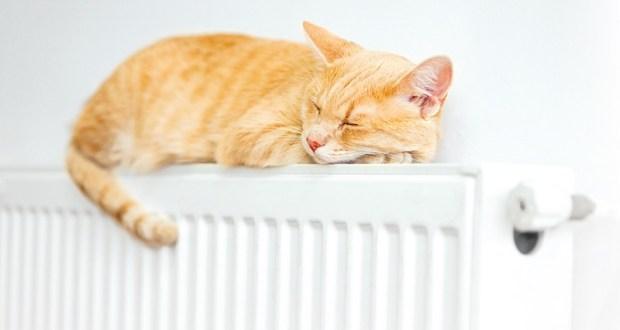 Министерство ЖКХ Крыма: Управляющие организации обязаны обеспечить подачу тепла в квартиры