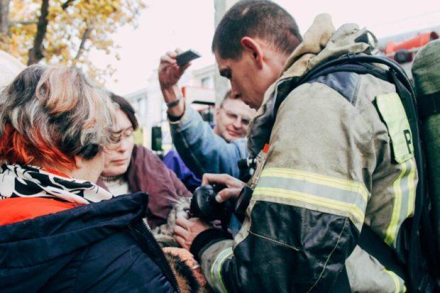 Пожар в Севастополе: среди спасённых - три человека и три кота